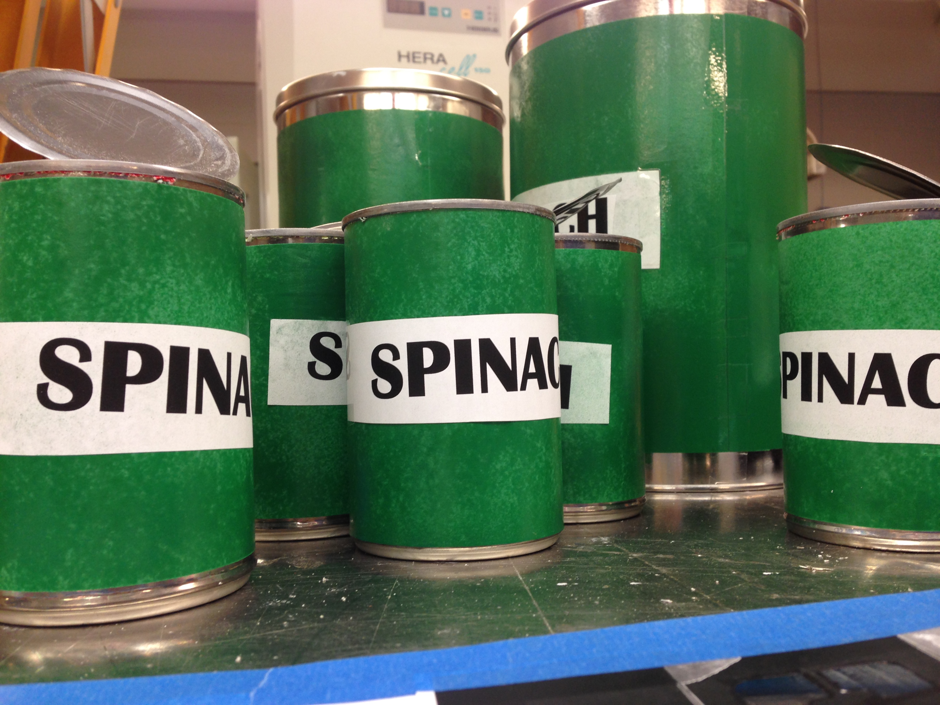 The Bond LSC facilities department crafted mock spinach cans to play up the Popeye theme for this year's Float Your Boat for the Food Bank Race— BLANKENBUEHLER