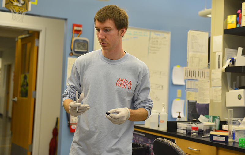 Hannah Baldwin/Bond LSC MU junior Nathan Coffey works in Dr. Dawn Cornelison's lab on an experiment involving muscle tissue on Thursday, April 9, 2015. Coffey, a winner of an arts and sciences scholarship, said his research focuses on how different types of muscle work within the body. He said that he hopes to complete an MDPhD one day so he can be a researcher and physician. This summer, he will intern at the National Institute on Alcohol Abuse and Alcoholism (NIAAA), which is part of the National Institutes of Health (NIH), in Bethesda, Md.